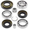 Differential Bearings