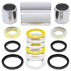 Swing Arm Bearings