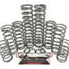 Shock Therapy Level 4 Dual Rate Spring Kit