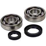 Crankshaft Bearings