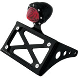 Roland Sands Design Tracker Tail Light with Horizontal License Plate Holder Passenger Peg Mount
