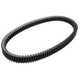 Trinity Racing Worlds Best Drive Belt
