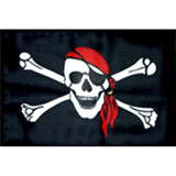 Wheeler Whips Replacement Flag Skull/Bones