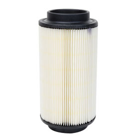 Polaris OEM Air Filter