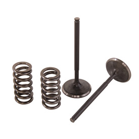 Pro X Steel Exhaust Valve/Spring Kit