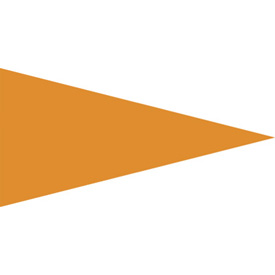 Tusk Orange Replacement Flag